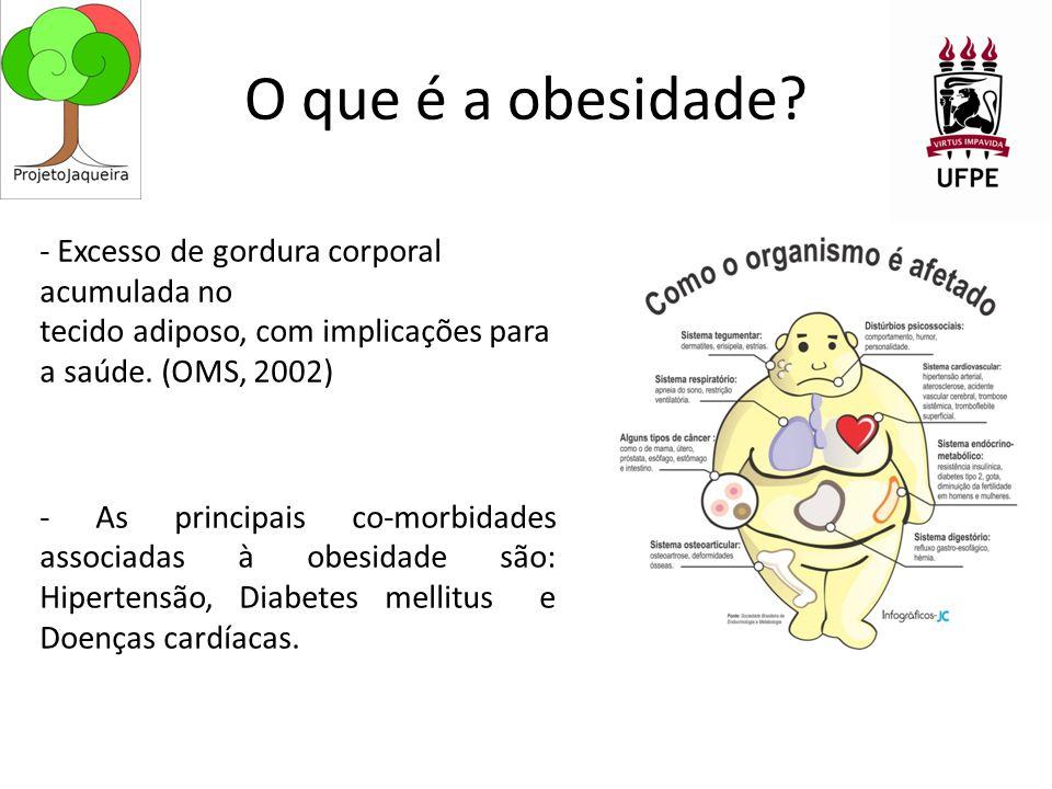 O que é a obesidade
