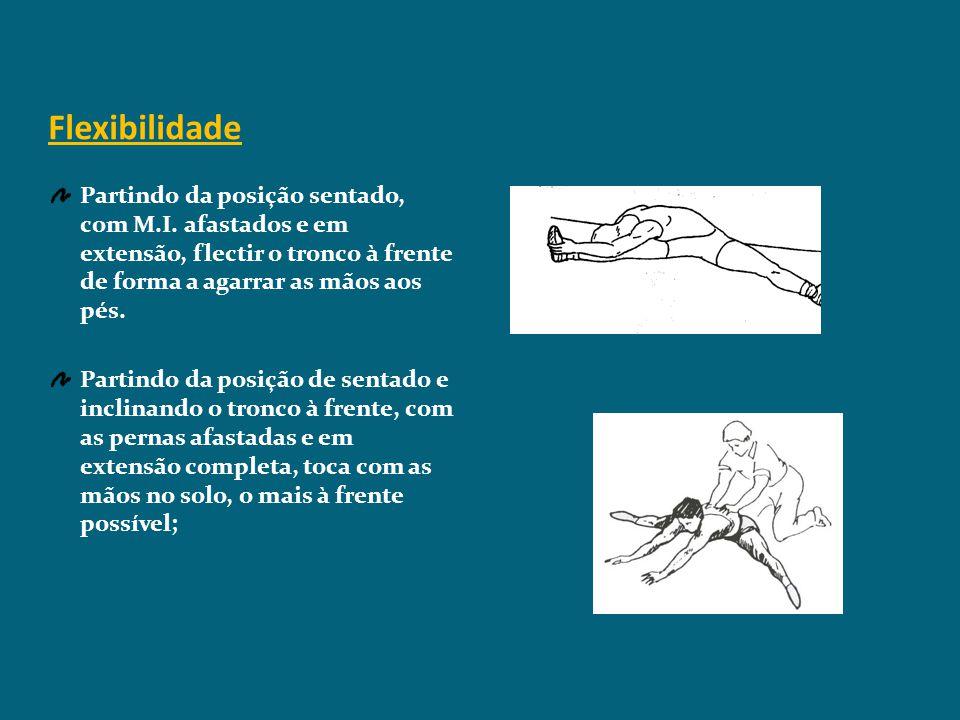 Treino da Flexibilidade