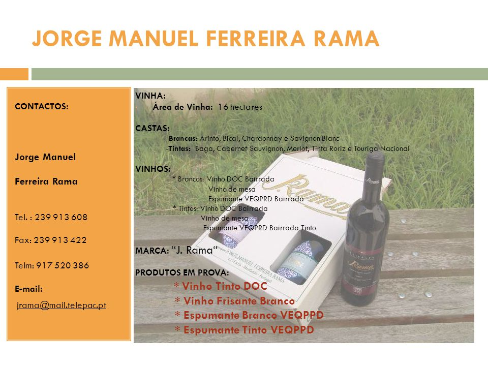 JORGE MANUEL FERREIRA RAMA