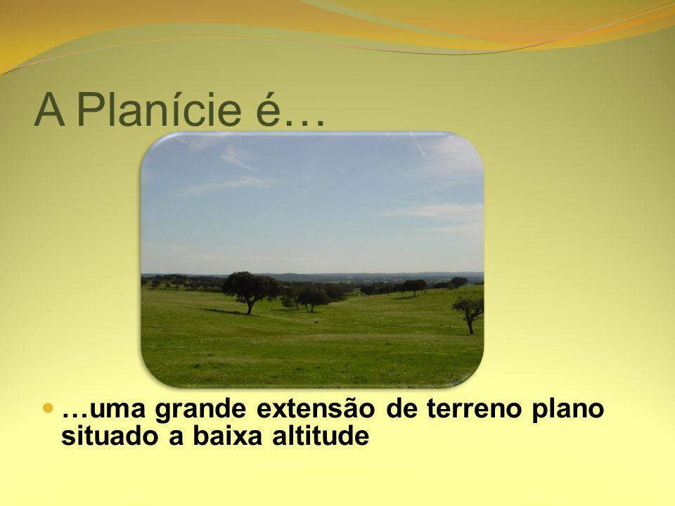 A Planície é… …uma grande extensão de terreno plano situado a baixa altitude