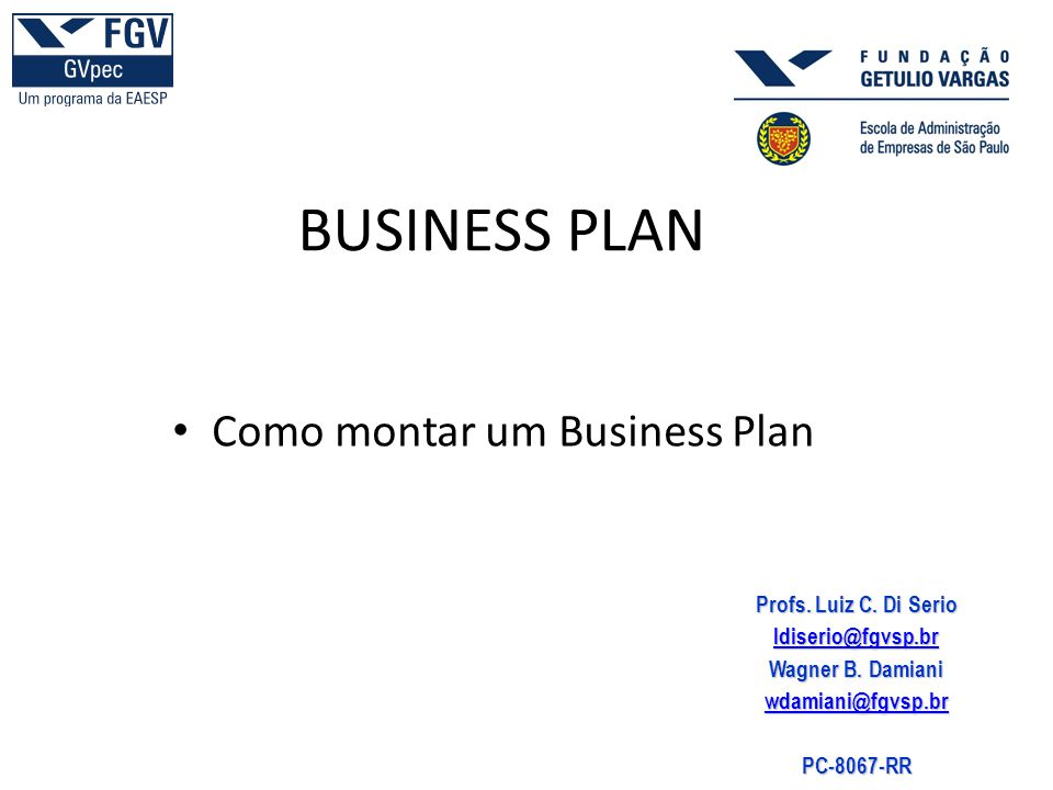 BUSINESS PLAN Como montar um Business Plan Profs. Luiz C. Di Serio
