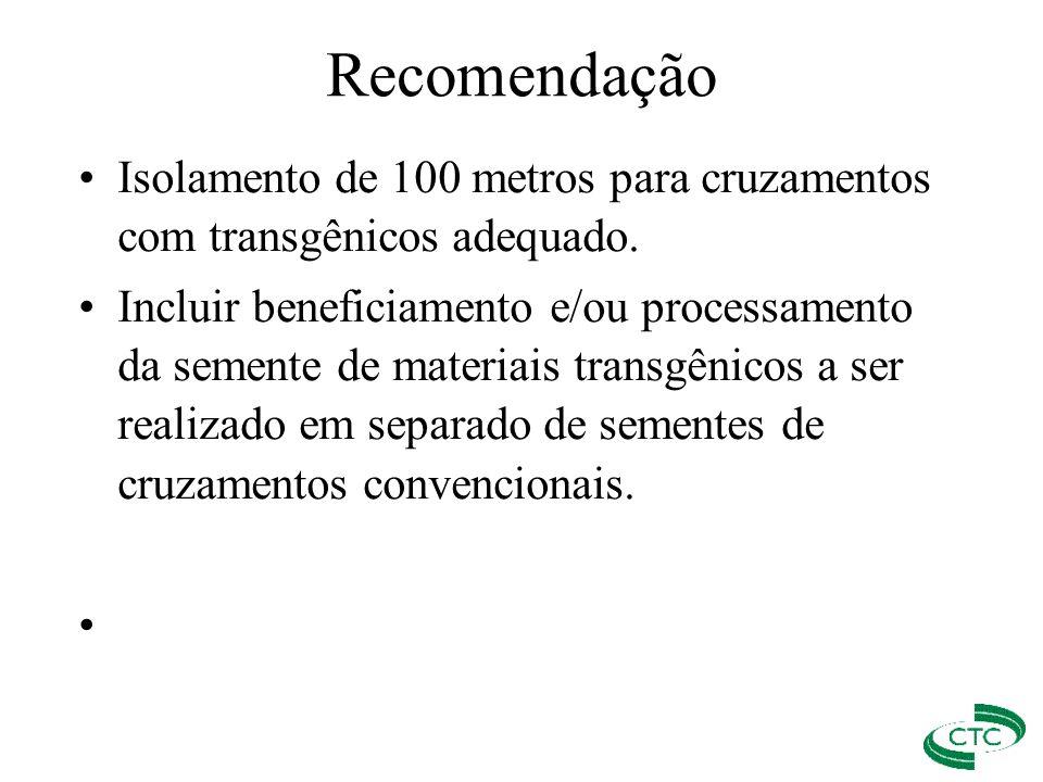 Recomendação Isolamento de 100 metros para cruzamentos com transgênicos adequado.
