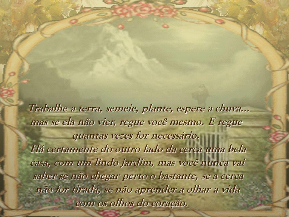 Trabalhe a terra, semeie, plante, espere a chuva...