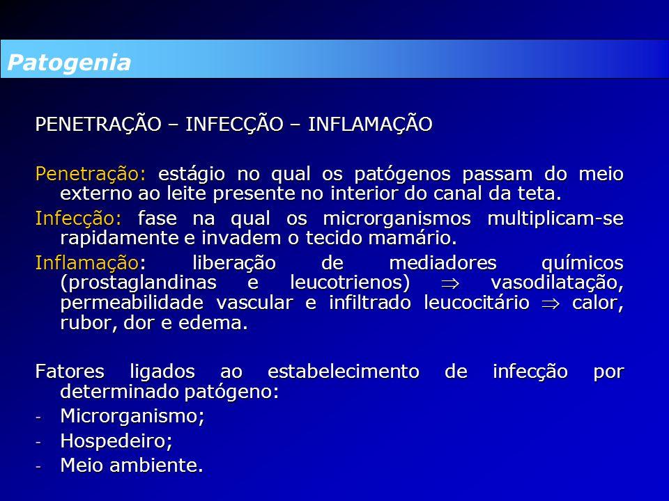 Patogenia PENETRAÇÃO – INFECÇÃO – INFLAMAÇÃO