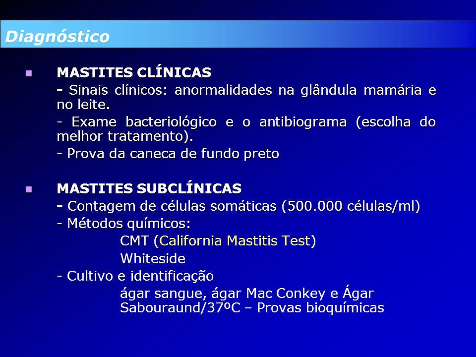 Diagnóstico MASTITES CLÍNICAS