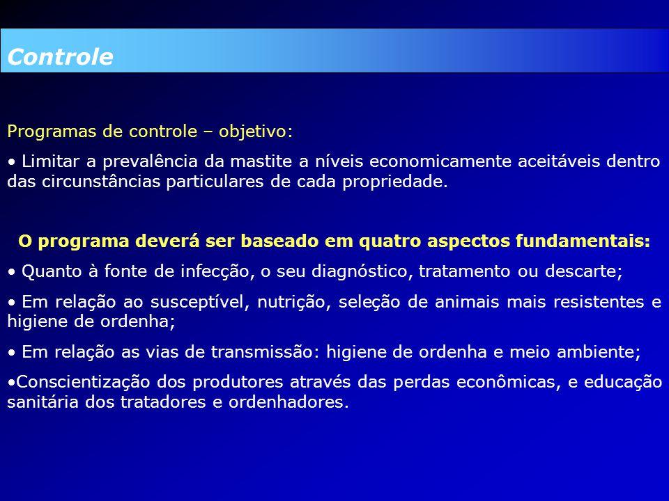 O programa deverá ser baseado em quatro aspectos fundamentais: