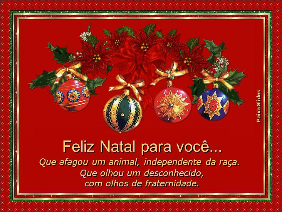 Feliz Natal para você... Que afagou um animal, independente da raça.