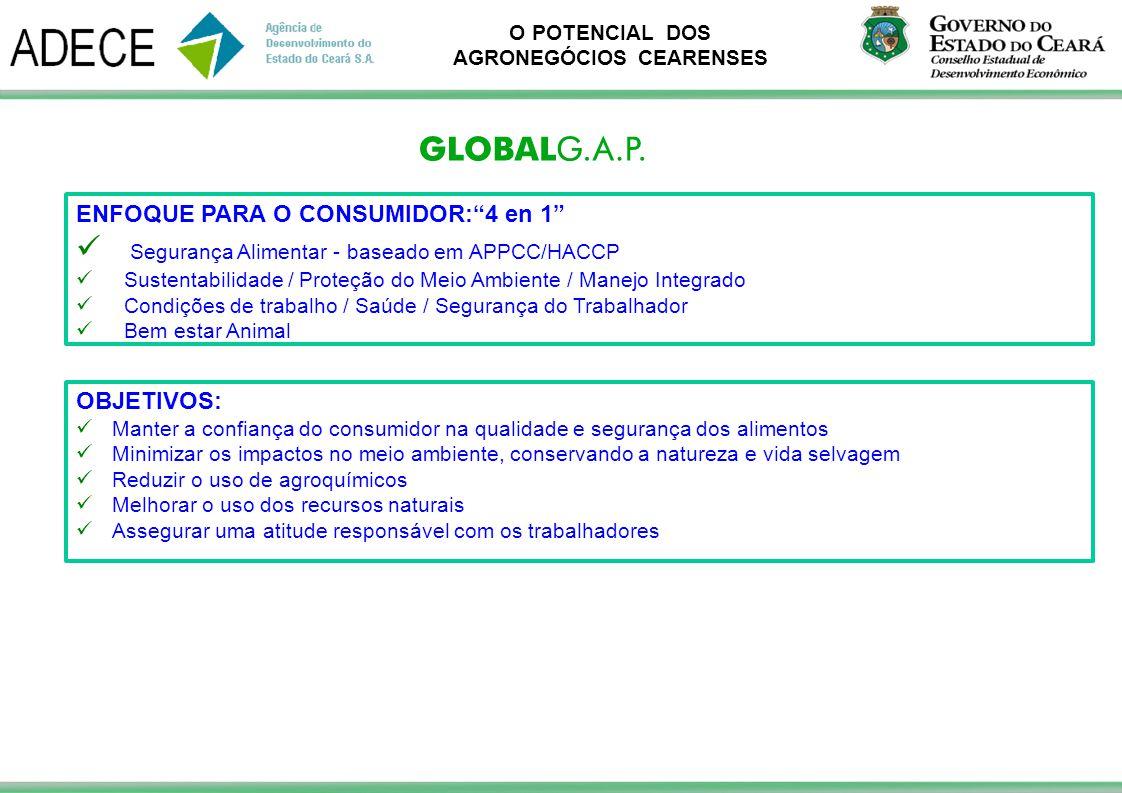 Segurança Alimentar - baseado em APPCC/HACCP