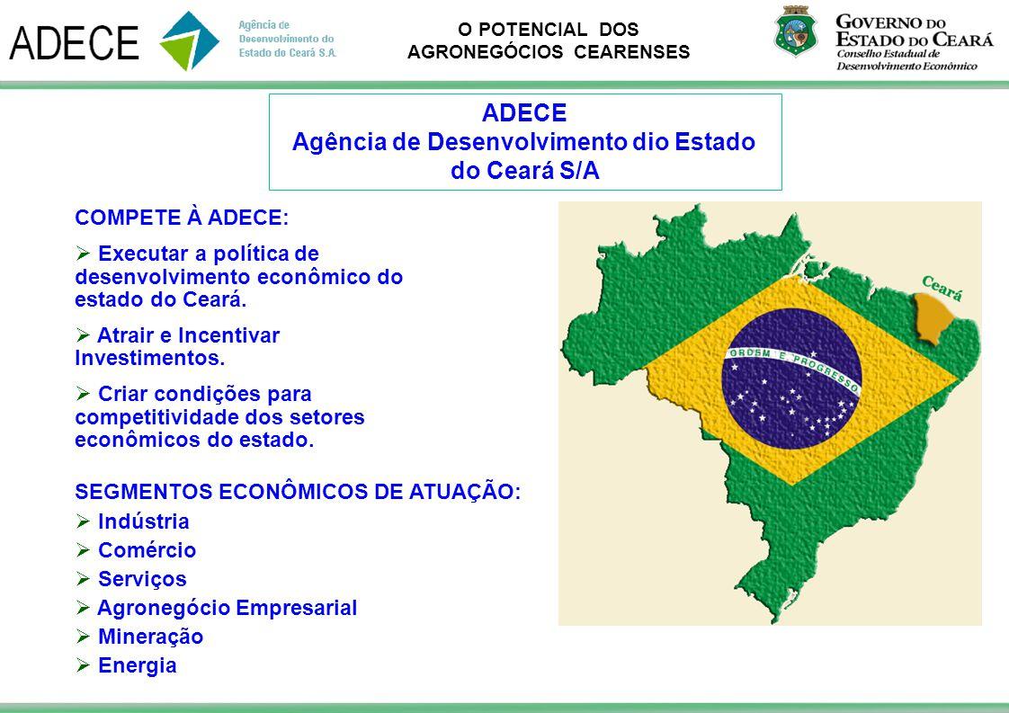 Agência de Desenvolvimento dio Estado do Ceará S/A