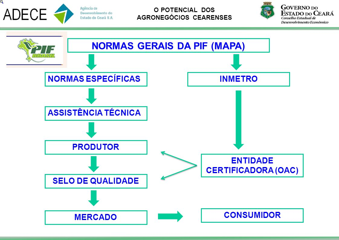 NORMAS GERAIS DA PIF (MAPA) ENTIDADE CERTIFICADORA (OAC)