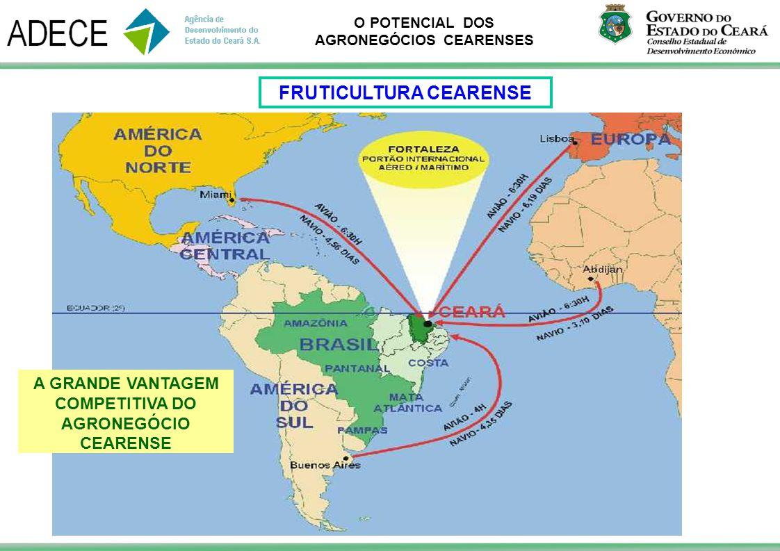 FRUTICULTURA CEARENSE COMPETITIVA DO AGRONEGÓCIO