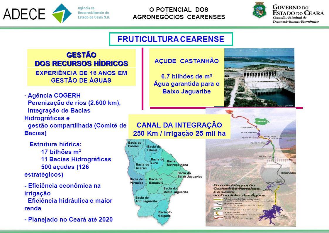 FRUTICULTURA CEARENSE Água garantida para o Baixo Jaguaribe