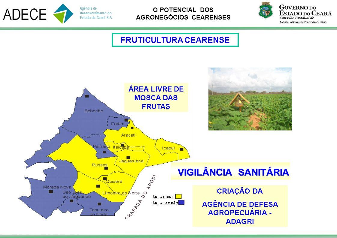 VIGILÂNCIA SANITÁRIA FRUTICULTURA CEARENSE