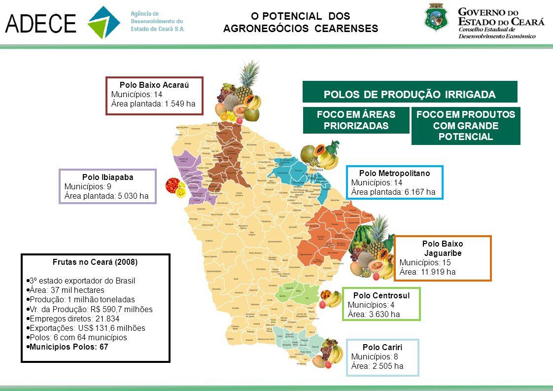 POLOS DE PRODUÇÃO IRRIGADA