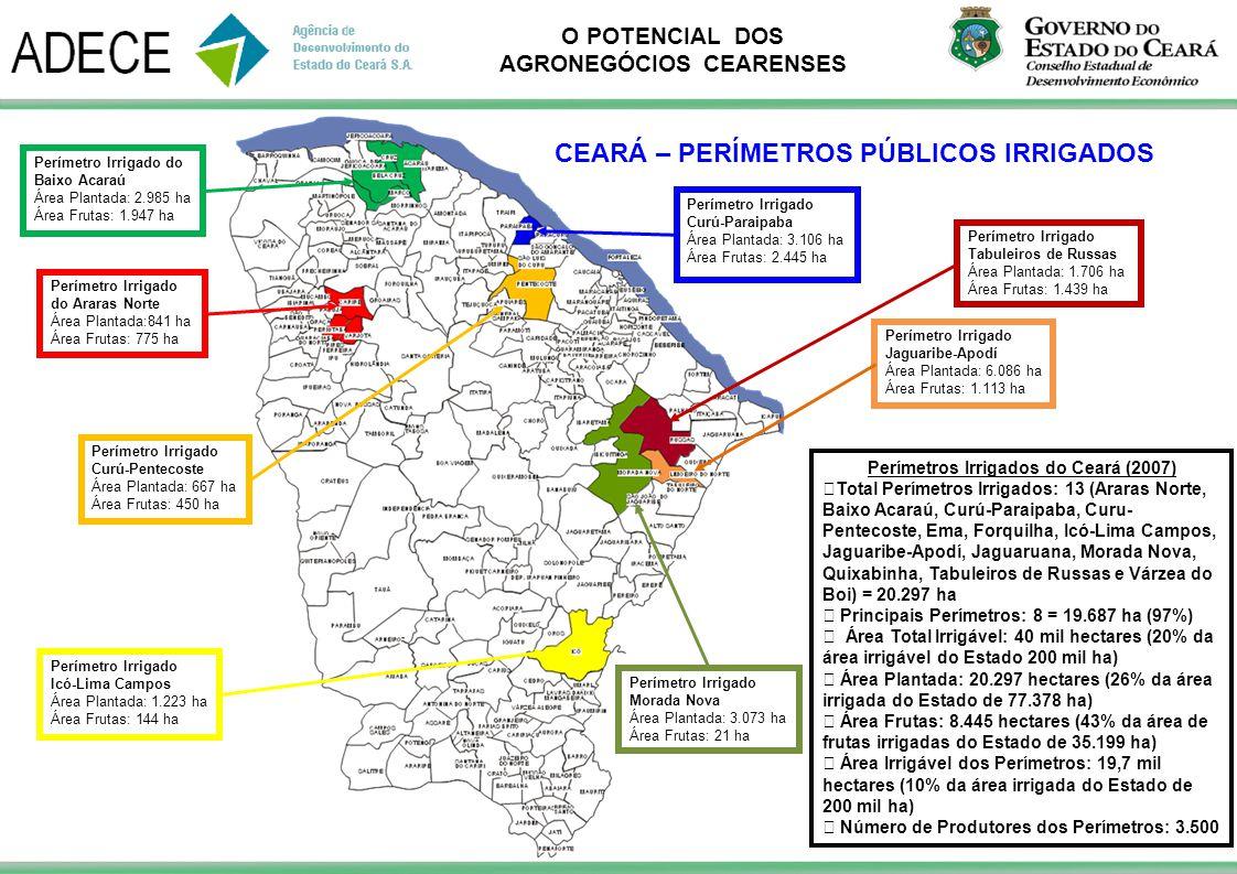 Perímetros Irrigados do Ceará (2007)