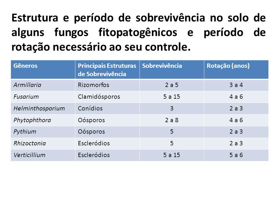 Estrutura e período de sobrevivência no solo de alguns fungos fitopatogênicos e período de rotação necessário ao seu controle.