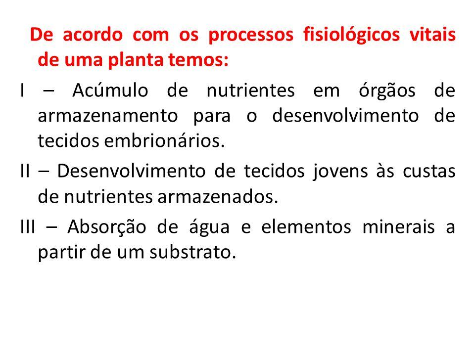 De acordo com os processos fisiológicos vitais de uma planta temos: I – Acúmulo de nutrientes em órgãos de armazenamento para o desenvolvimento de tecidos embrionários.