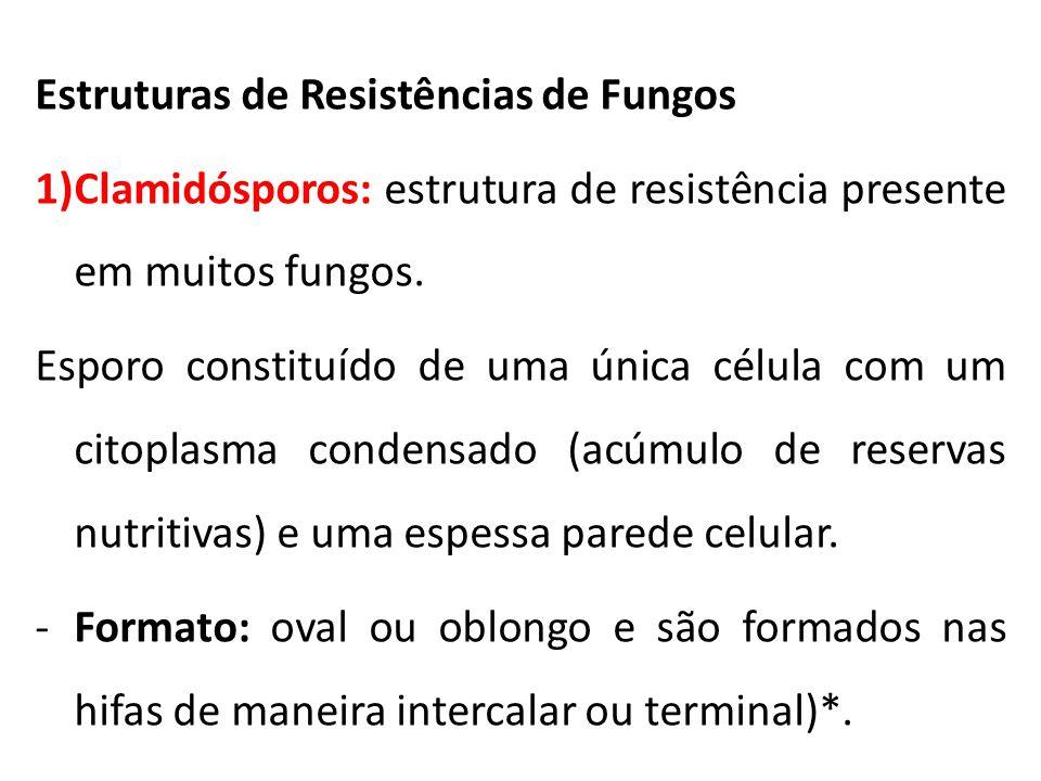 Estruturas de Resistências de Fungos