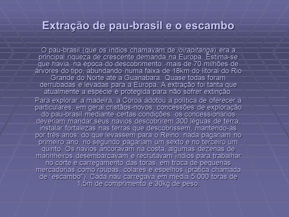 Extração de pau-brasil e o escambo