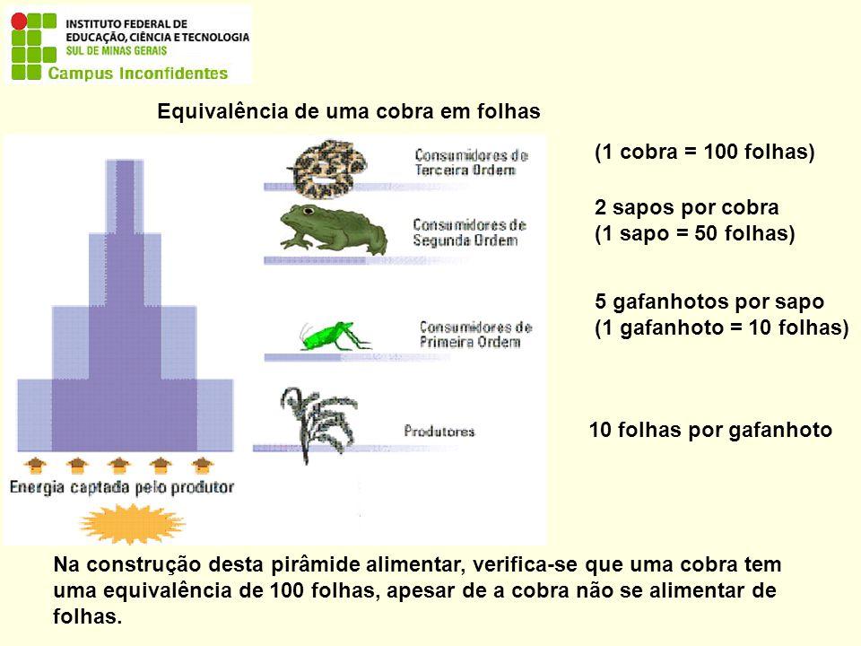 Equivalência de uma cobra em folhas