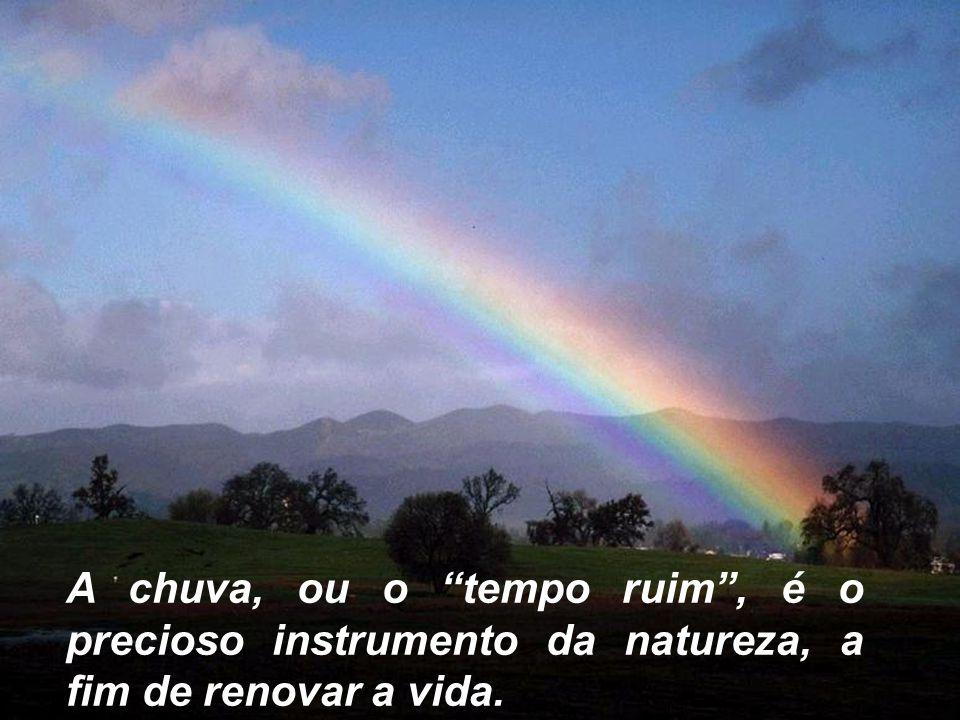 A chuva, ou o tempo ruim , é o precioso instrumento da natureza, a fim de renovar a vida.
