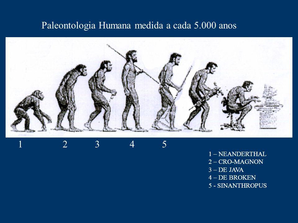 Paleontologia Humana medida a cada 5.000 anos