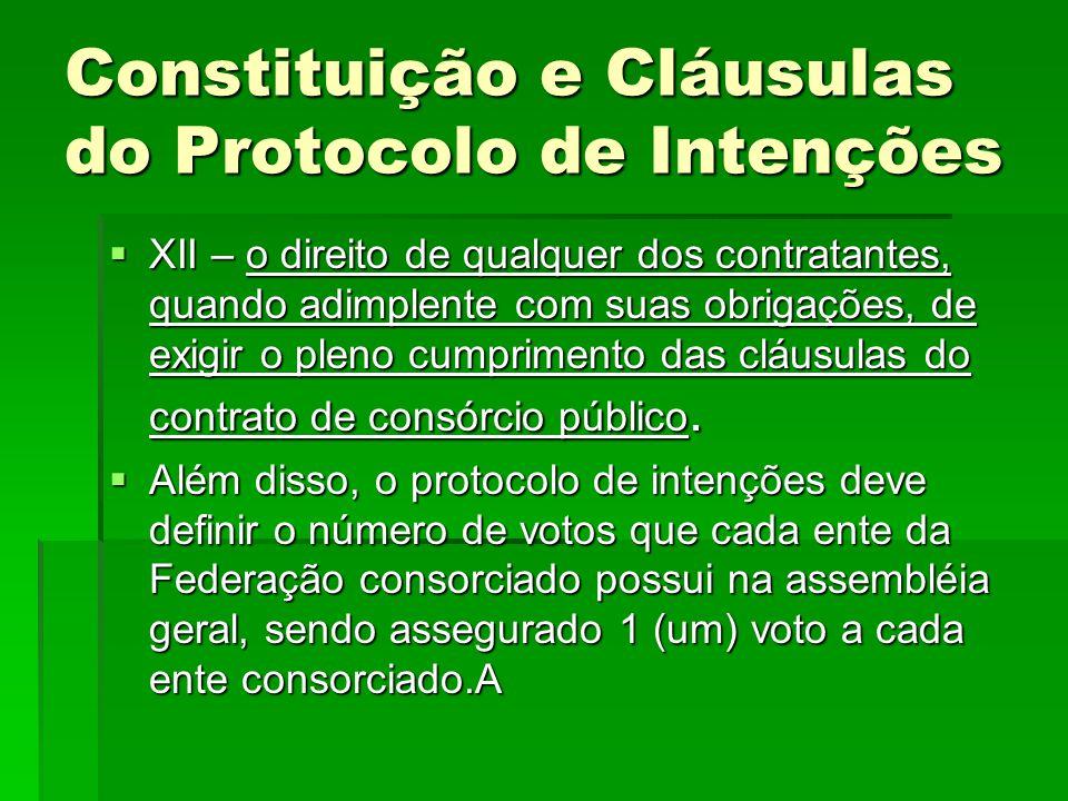 Constituição e Cláusulas do Protocolo de Intenções