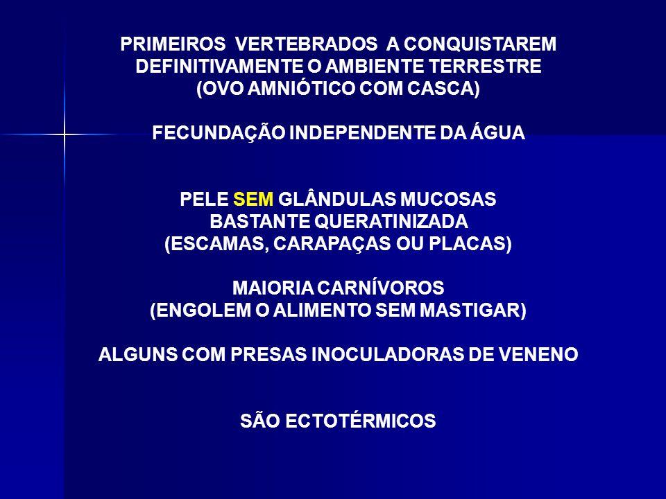 (OVO AMNIÓTICO COM CASCA) FECUNDAÇÃO INDEPENDENTE DA ÁGUA