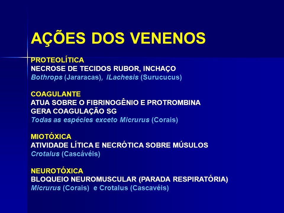 AÇÕES DOS VENENOS PROTEOLÍTICA NECROSE DE TECIDOS RUBOR, INCHAÇO