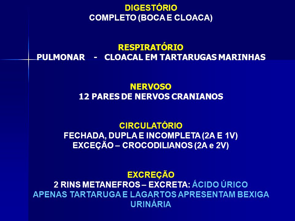 COMPLETO (BOCA E CLOACA)