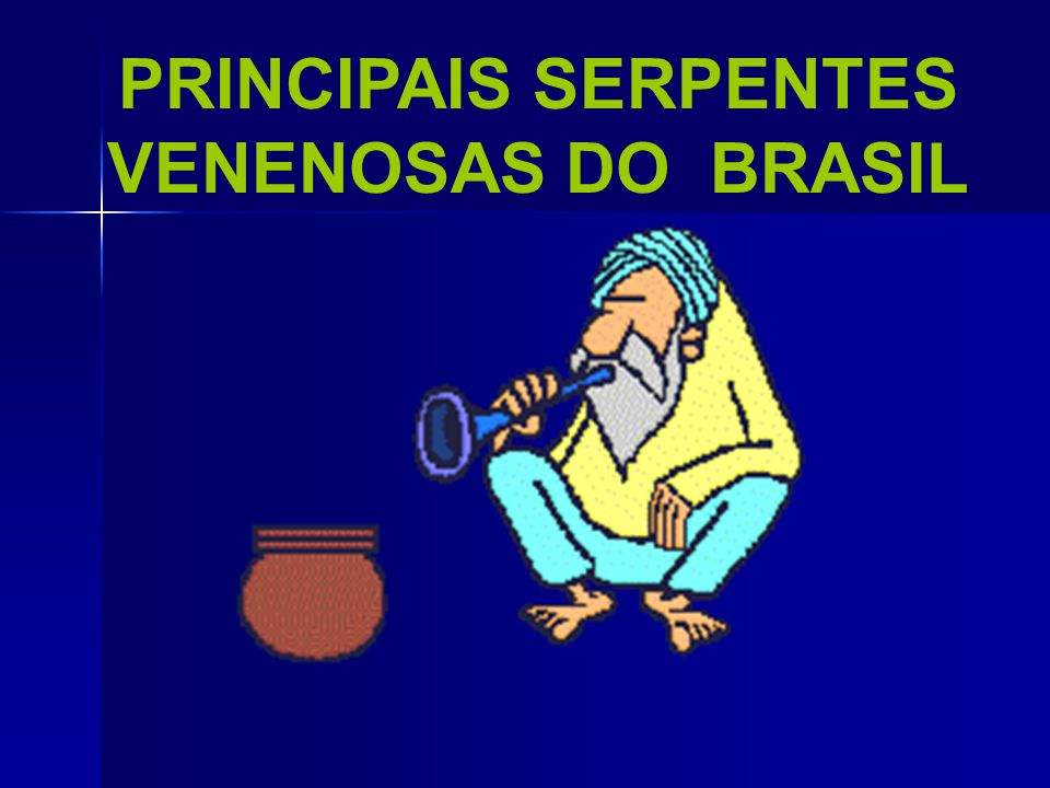 PRINCIPAIS SERPENTES VENENOSAS DO BRASIL