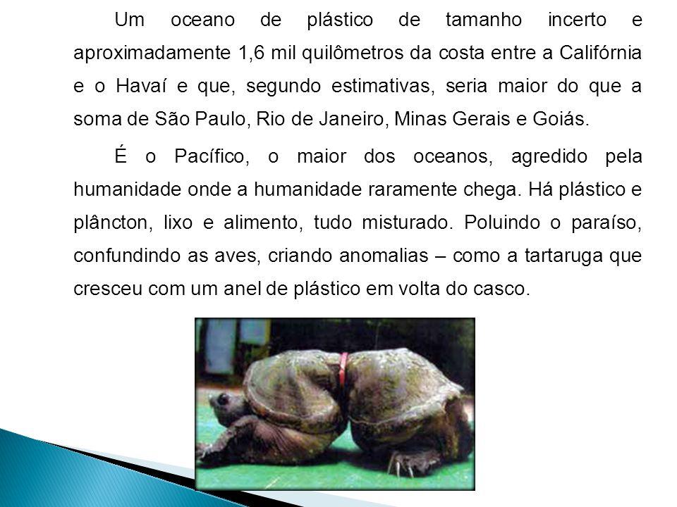 Um oceano de plástico de tamanho incerto e aproximadamente 1,6 mil quilômetros da costa entre a Califórnia e o Havaí e que, segundo estimativas, seria maior do que a soma de São Paulo, Rio de Janeiro, Minas Gerais e Goiás.