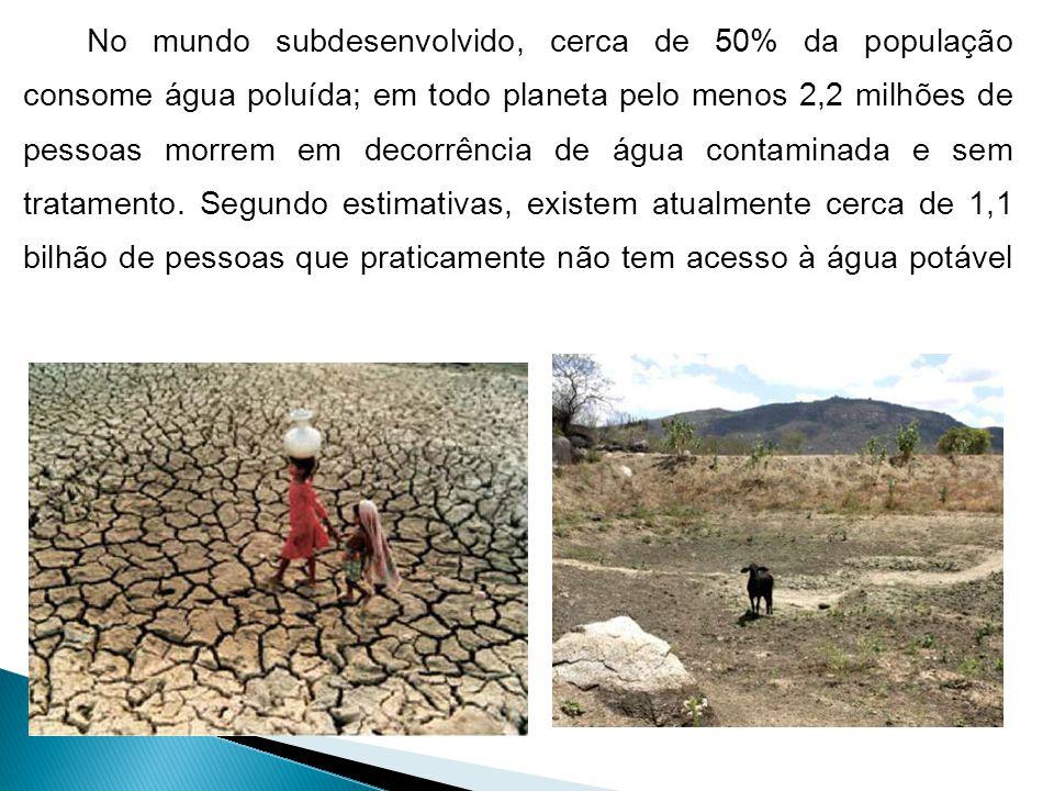 No mundo subdesenvolvido, cerca de 50% da população consome água poluída; em todo planeta pelo menos 2,2 milhões de pessoas morrem em decorrência de água contaminada e sem tratamento.