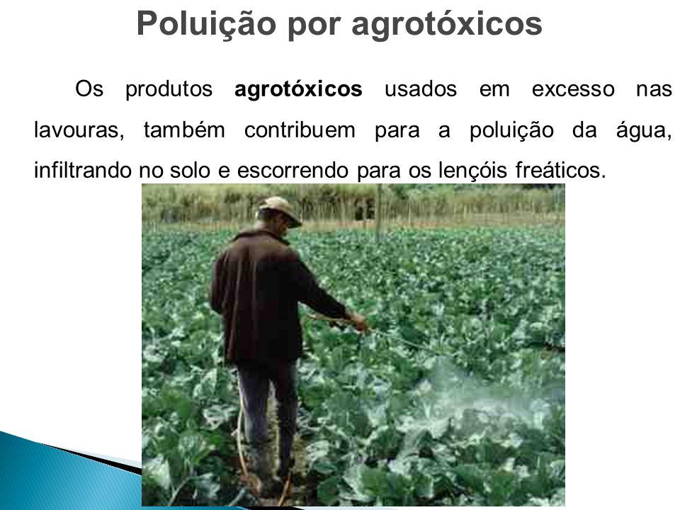 Poluição por agrotóxicos