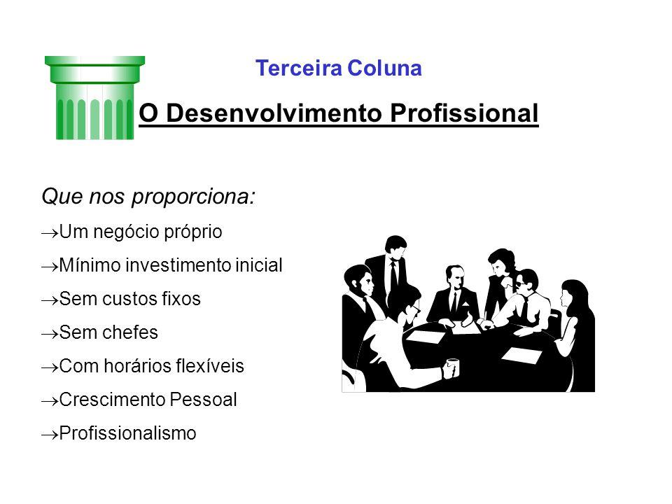 O Desenvolvimento Profissional