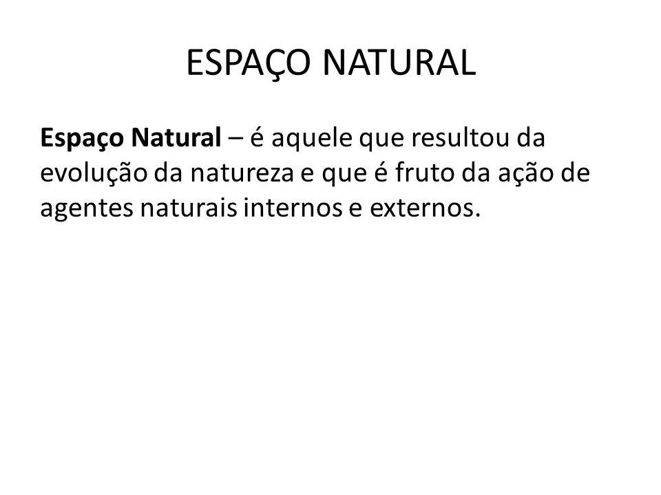 ESPAÇO NATURAL Espaço Natural – é aquele que resultou da evolução da natureza e que é fruto da ação de agentes naturais internos e externos.