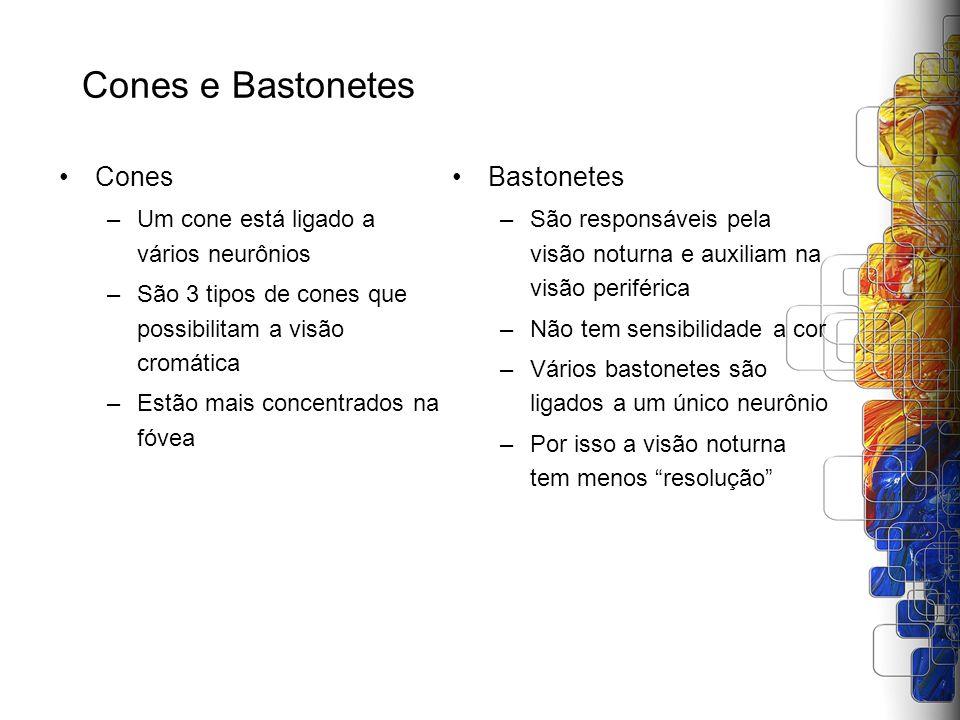 Cones e Bastonetes Cones Bastonetes