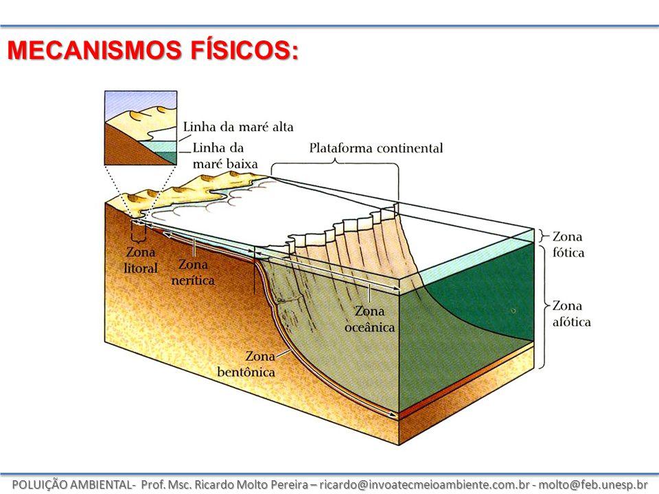 MECANISMOS FÍSICOS: Poluição Ambiental- prof. Msc.