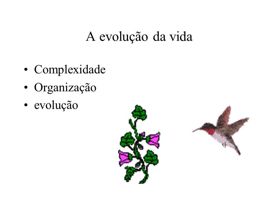 A evolução da vida Complexidade Organização evolução