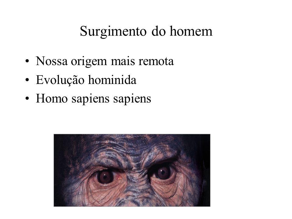 Surgimento do homem Nossa origem mais remota Evolução hominida