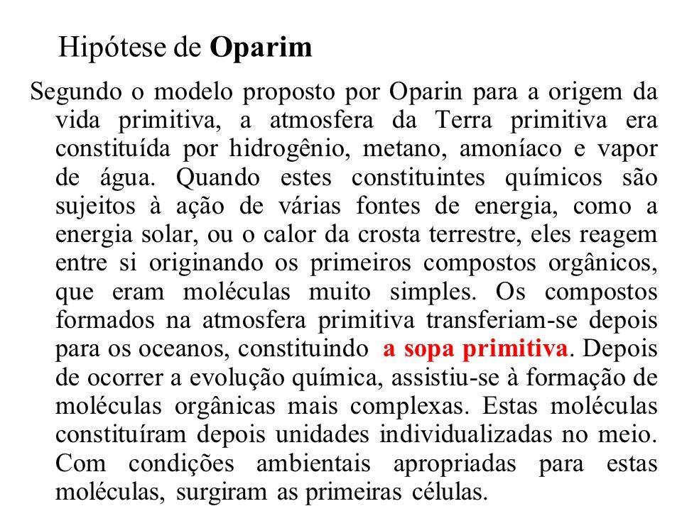 Hipótese de Oparim