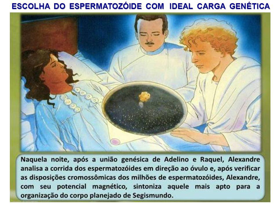 ESCOLHA DO ESPERMATOZÓIDE COM IDEAL CARGA GENÉTICA