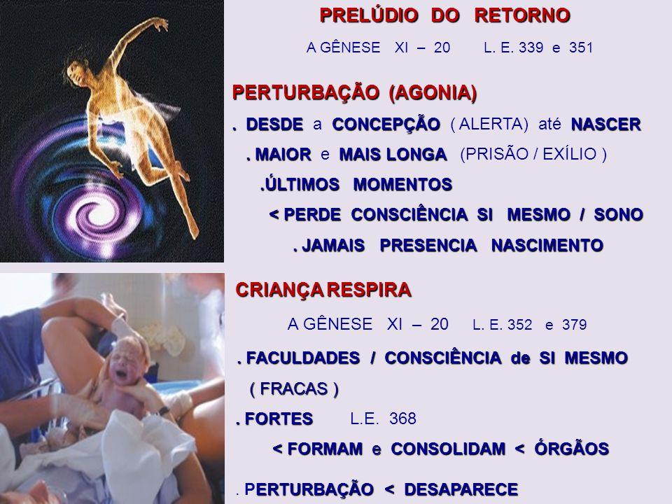 . FACULDADES / CONSCIÊNCIA de SI MESMO