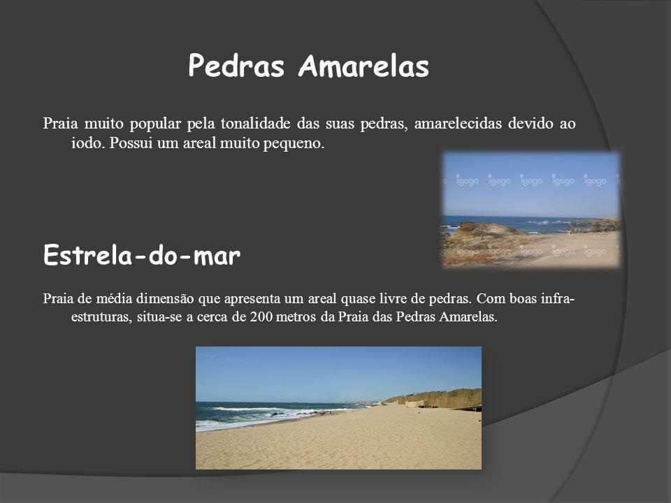 Pedras Amarelas Estrela-do-mar
