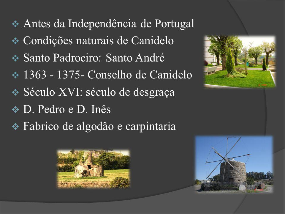 Antes da Independência de Portugal