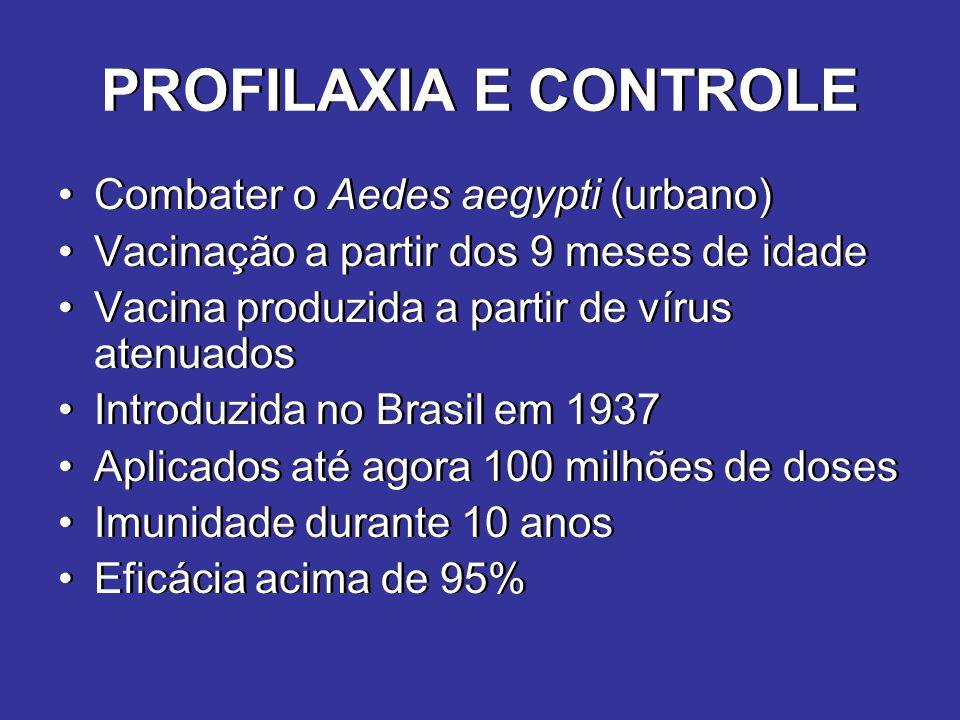 PROFILAXIA E CONTROLE Combater o Aedes aegypti (urbano)