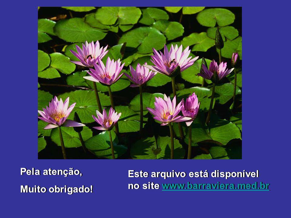 Pela atenção, Muito obrigado! Este arquivo está disponível no site www.barraviera.med.br