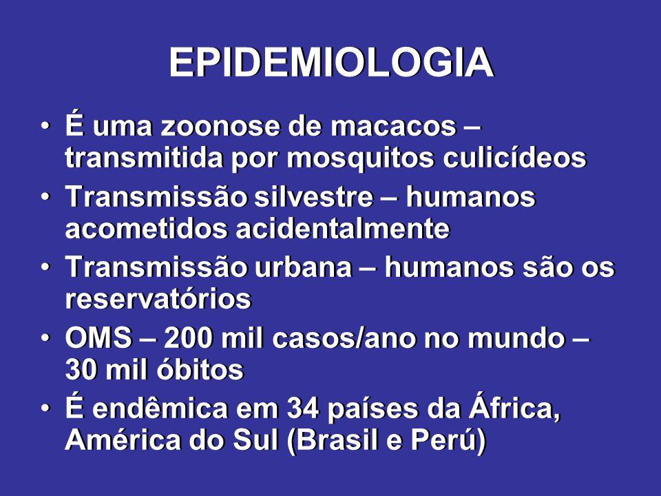 EPIDEMIOLOGIA É uma zoonose de macacos – transmitida por mosquitos culicídeos. Transmissão silvestre – humanos acometidos acidentalmente.