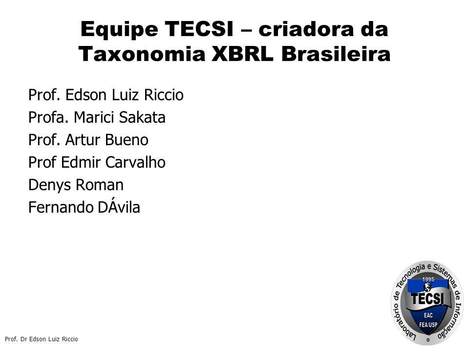 Equipe TECSI – criadora da Taxonomia XBRL Brasileira