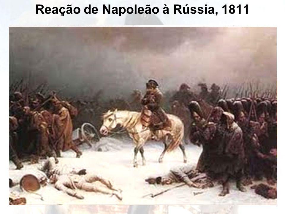 Reação de Napoleão à Rússia, 1811